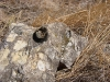 Камень с отверстием с Каргалинских рудников