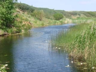 Река Большая Караганка