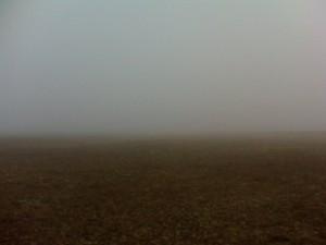 Туман в Орской степи