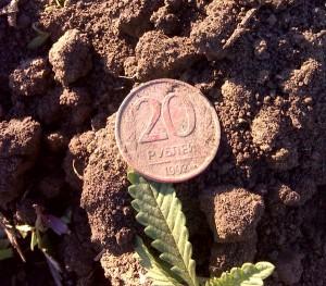 20 рублей 1992 год