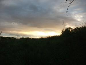 Перед закатом солнца