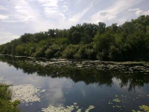 Река Орь