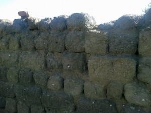 Стена сарая