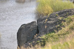 надрезанная скала