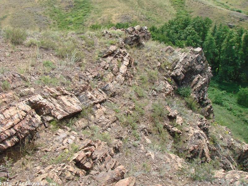 Аулганское ущелье