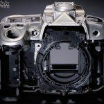 Nikon D300s спустя полгода