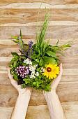 Какие цветы в букете сочетаются