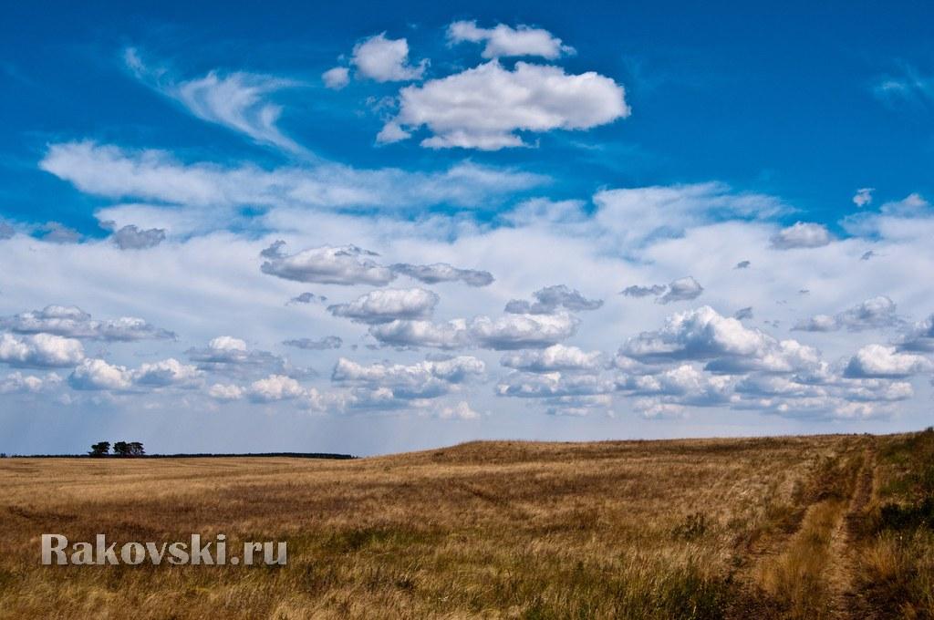 Оренбургская степь. Кваркенский район, Оренбургская область