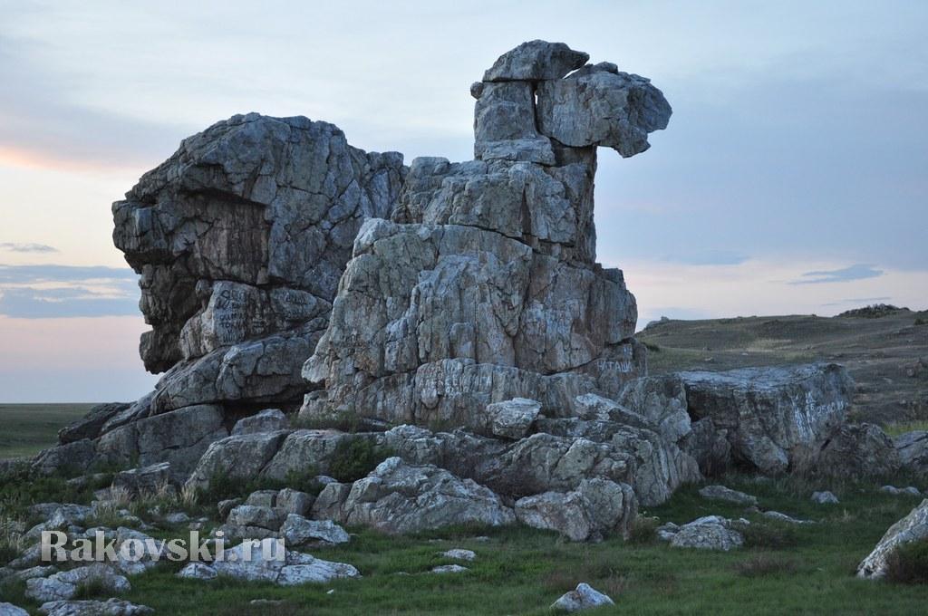 Скала Верблюд. Оренбургская область