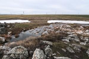Река возле Скалы Верблюд